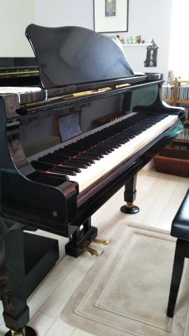 ピアノ初心者向けの五線譜